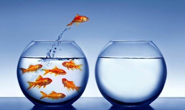 El cambio efectivo requiere liderazgo de sí mismo